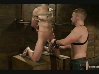 gay in thraldom acquires his dick tortured