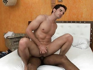 sleepy dark homosexual guy gets his wang sucked