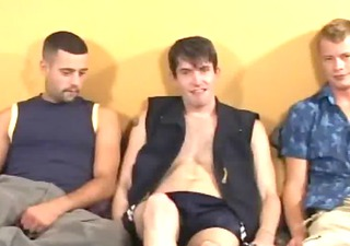 ultra lovely excellent trio on a couch