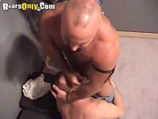 muscle bears playing coarse