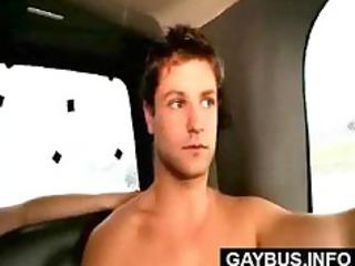 bus homo and str7
