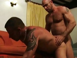older bearded gay hunks having incredible sex