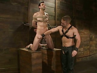 homosexual in servitude acquires his jock tortured